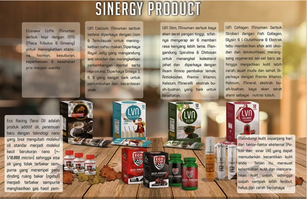 Marketing Plan Sinergy